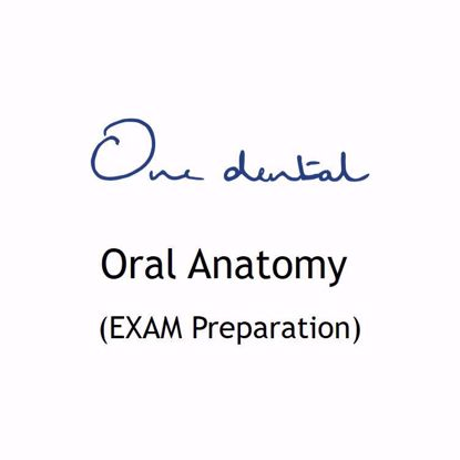 Picture of Oral Anatomy