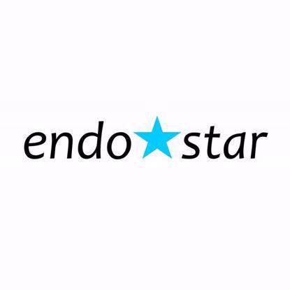 Picture of Endodontics: The Endostar way